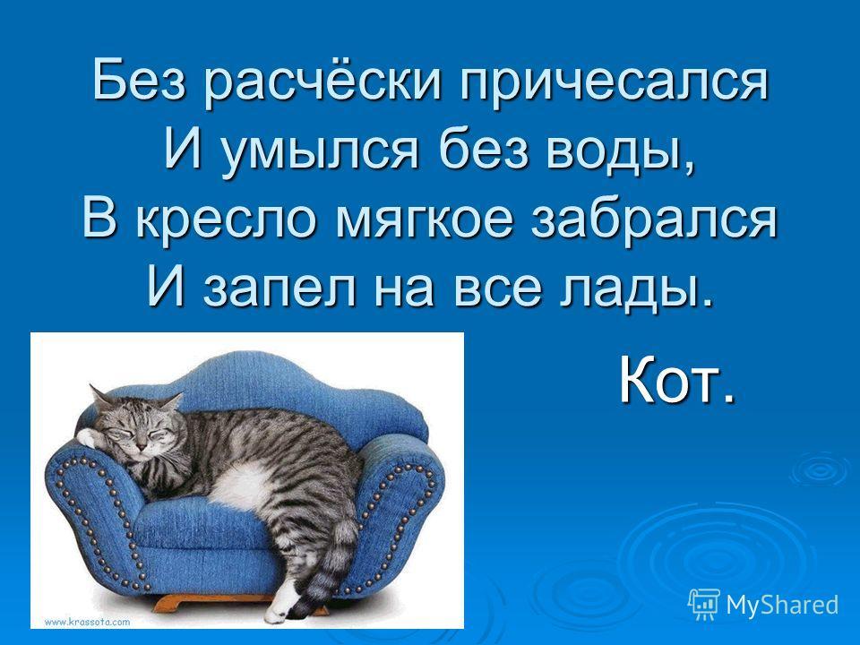 Без расчёски причесался И умылся без воды, В кресло мягкое забрался И запел на все лады. Кот.