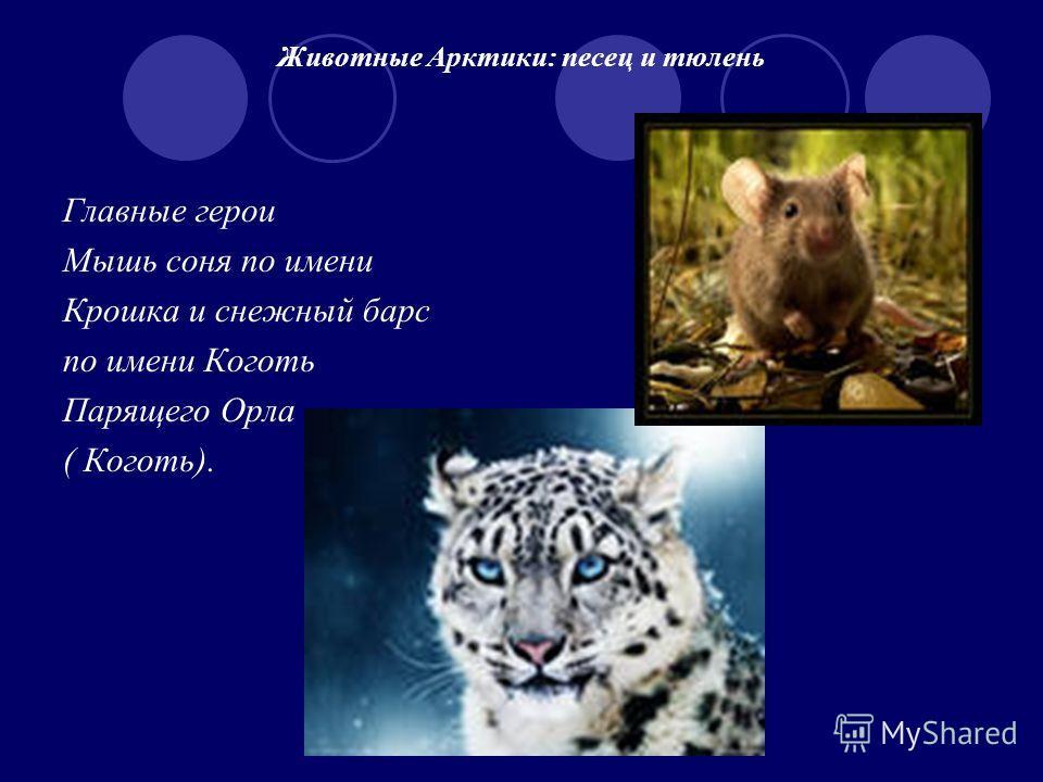 Животные Арктики: песец и тюлень Главные герои Мышь соня по имени Крошка и снежный барс по имени Коготь Парящего Орла ( Коготь).