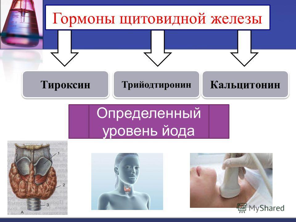 Тироксин Трийодтиронин Кальцитонин Гормоны щитовидной железы Определенный уровень йода