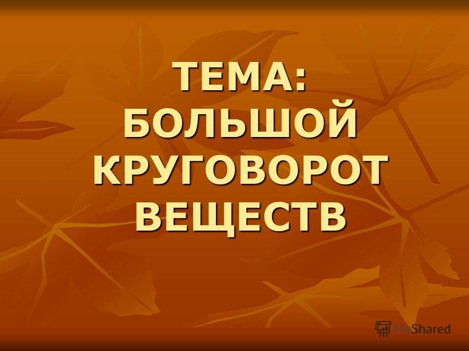 ТЕМА: БОЛЬШОЙ КРУГОВОРОТ ВЕЩЕСТВ