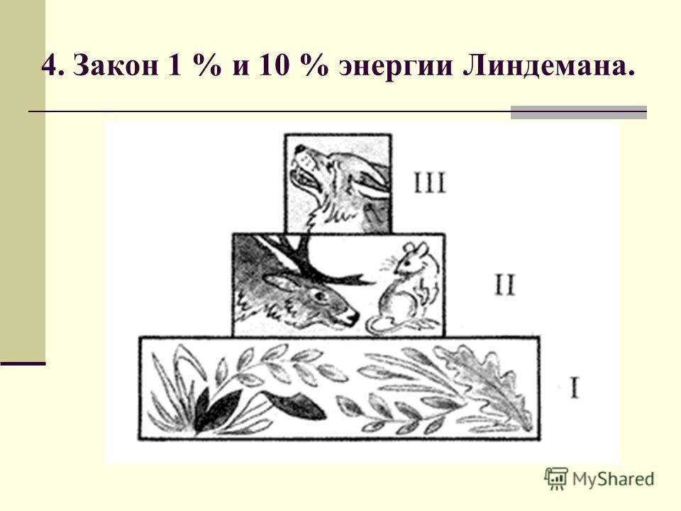 4. Закон 1 % и 10 % энергии Линдемана.