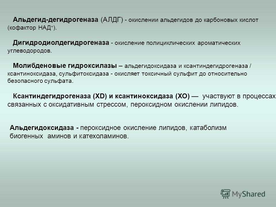 Альдегид-дегидрогеназа (АЛДГ) - окислении альдегидов до карбоновых кислот (кофактор НАД + ). Дигидродиолдегидрогеназа - окисление полициклических ароматических углеводородов. Молибденовые гидроксилазы – альдегидоксидаза и ксантиндегидрогеназа / ксант