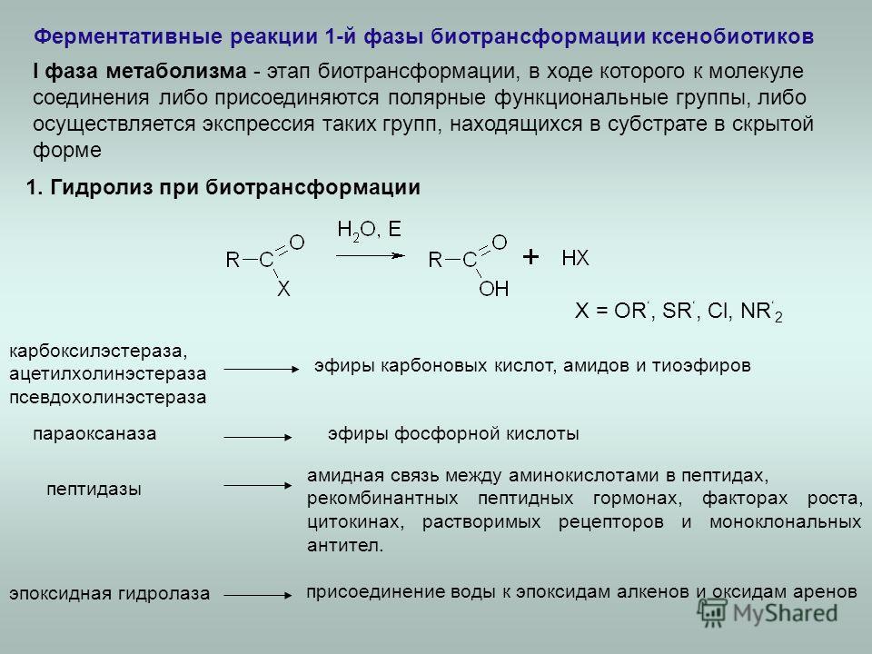 Ферментативные реакции 1-й фазы биотрансформации ксенобиотиков карбоксилэстераза, ацетилхолинэстераза псевдохолинэстераза эпоксидная гидролаза 1. Гидролиз при биотрансформации X = OR, SR, Cl, NR 2 параоксаназа амидная связь между аминокислотами в пеп