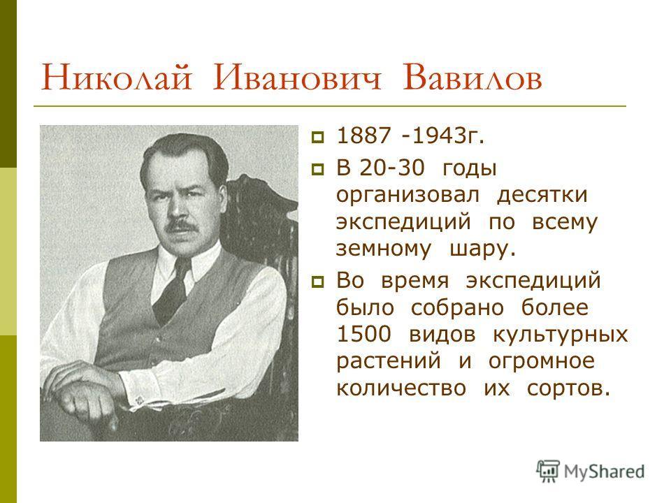 Николай Иванович Вавилов 1887 -1943г. В 20-30 годы организовал десятки экспедиций по всему земному шару. Во время экспедиций было собрано более 1500 видов культурных растений и огромное количество их сортов.