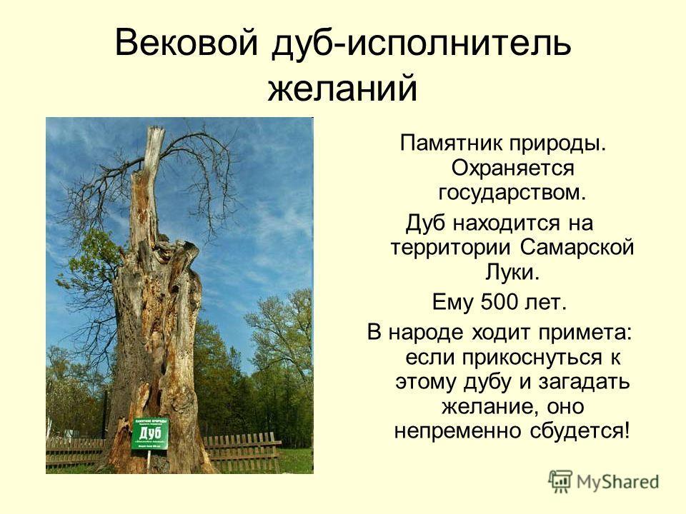Вековой дуб-исполнитель желаний Памятник природы. Охраняется государством. Дуб находится на территории Самарской Луки. Ему 500 лет. В народе ходит примета: если прикоснуться к этому дубу и загадать желание, оно непременно сбудется!