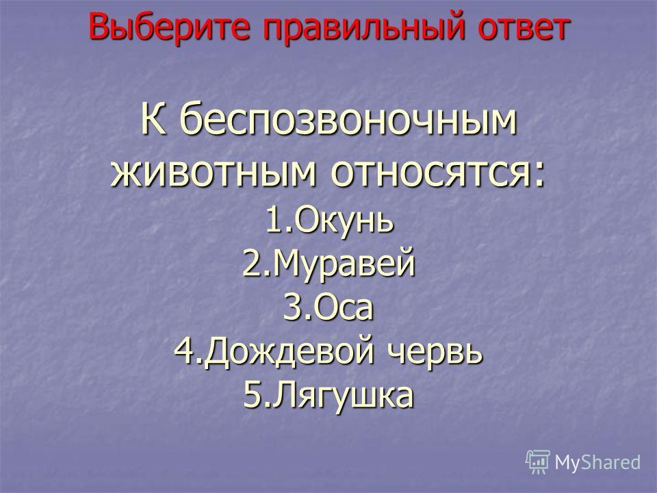 Выберите правильный ответ К беспозвоночным животным относятся: 1.Окунь 2.Муравей 3.Оса 4.Дождевой червь 5.Лягушка