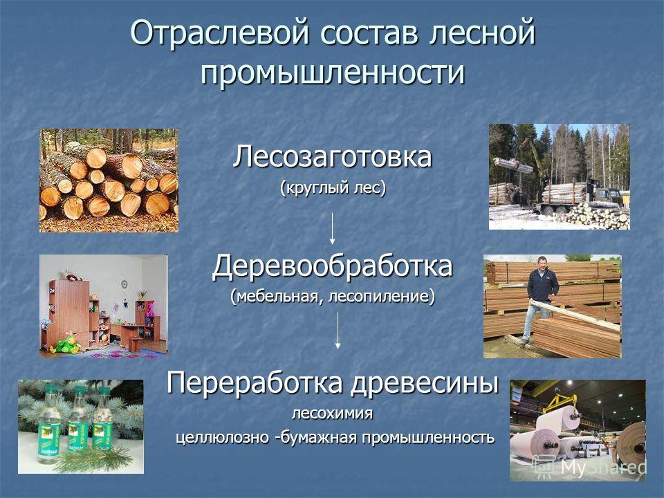Отраслевой состав лесной промышленности Лесозаготовка (круглый лес) Деревообработка (мебельная, лесопиление) Переработка древесины лесохимия целлюлозно -бумажная промышленность целлюлозно -бумажная промышленность