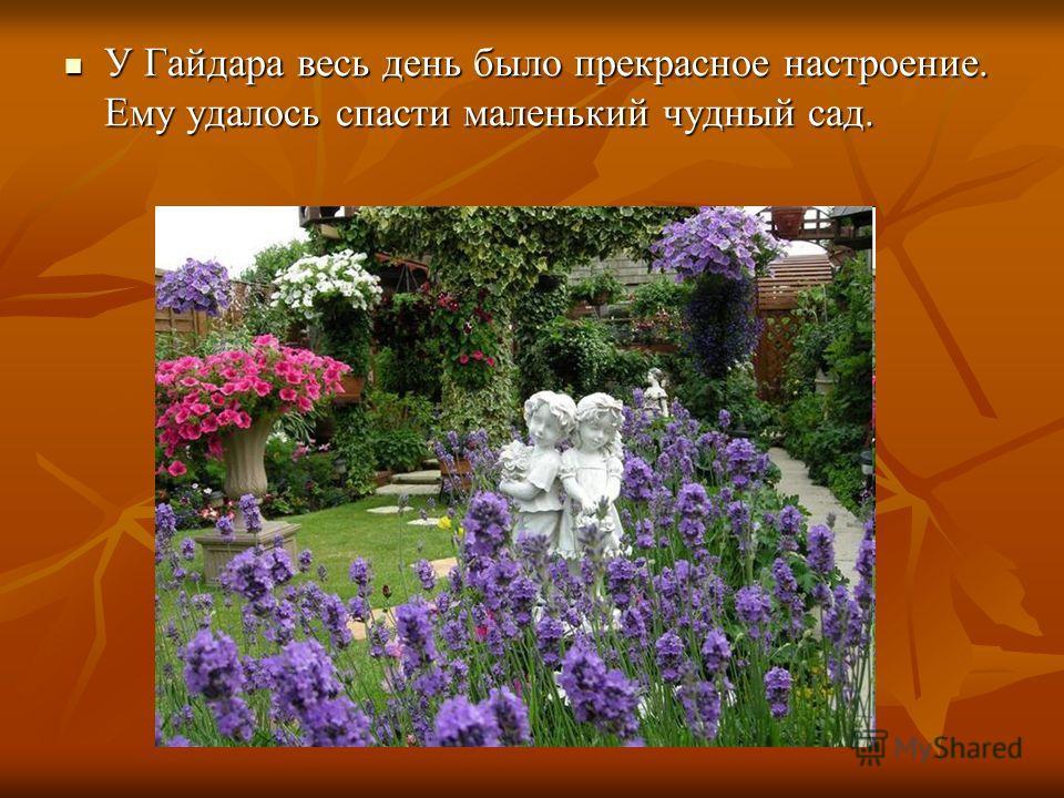 У Гайдара весь день было прекрасное настроение. Ему удалось спасти маленький чудный сад. У Гайдара весь день было прекрасное настроение. Ему удалось спасти маленький чудный сад.