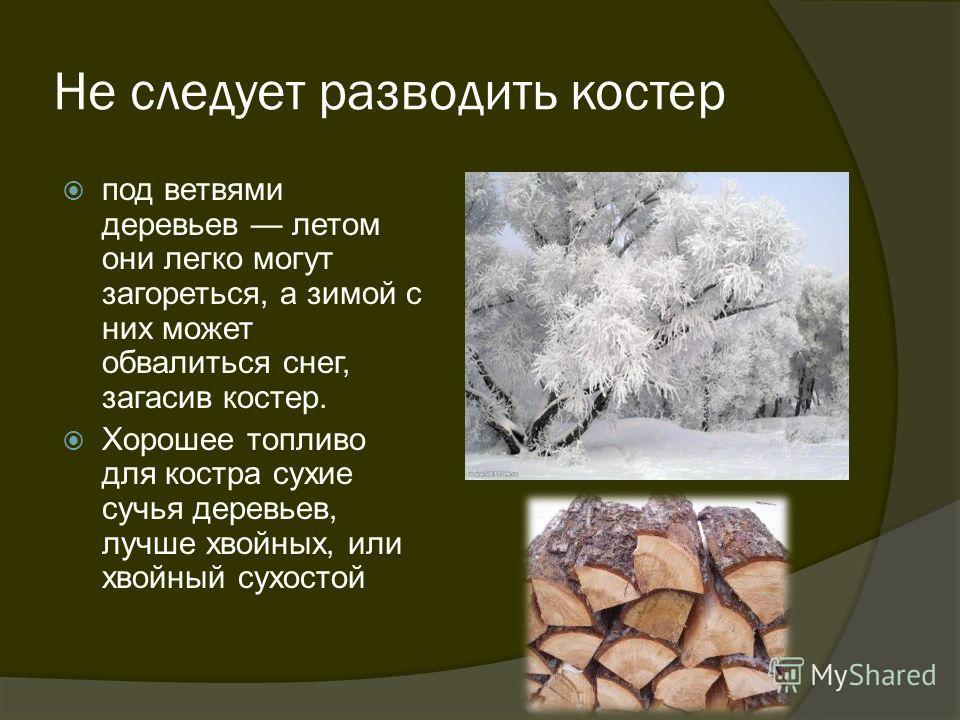 Не следует разводить костер под ветвями деревьев летом они легко могут загореться, а зимой с них может обвалиться снег, загасив костер. Хорошее топливо для костра сухие сучья деревьев, лучше хвойных, или хвойный сухостой