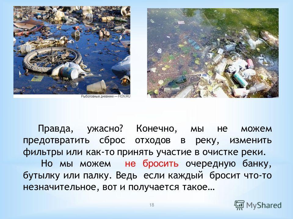 18 Правда, ужасно? Конечно, мы не можем предотвратить сброс отходов в реку, изменить фильтры или как-то принять участие в очистке реки. Но мы можем не бросить очередную банку, бутылку или палку. Ведь если каждый бросит что-то незначительное, вот и по
