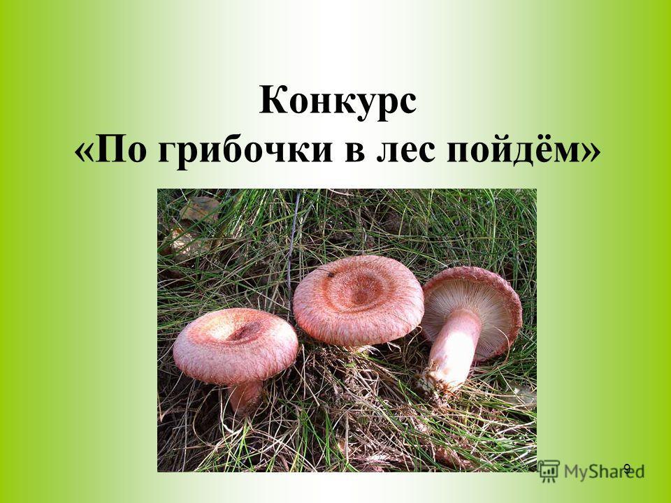 Конкурс «По грибочки в лес пойдём» 9