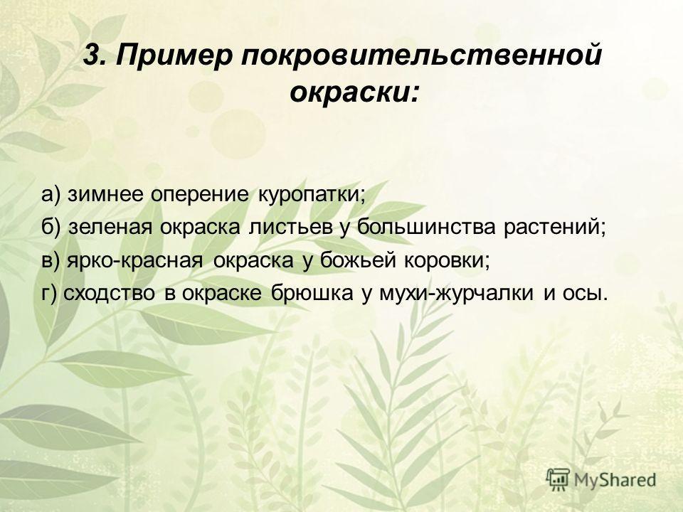 3. Пример покровительственной окраски: а) зимнее оперение куропатки; б) зеленая окраска листьев у большинства растений; в) ярко-красная окраска у божьей коровки; г) сходство в окраске брюшка у мухи-журчалки и осы.