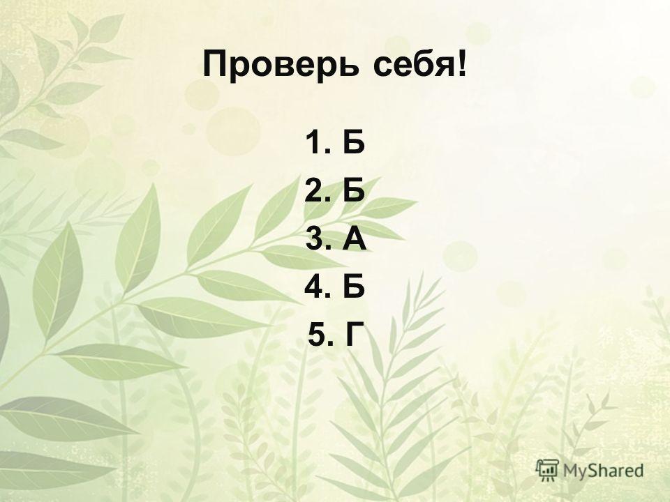 Проверь себя! 1.Б 2.Б 3.А 4.Б 5.Г