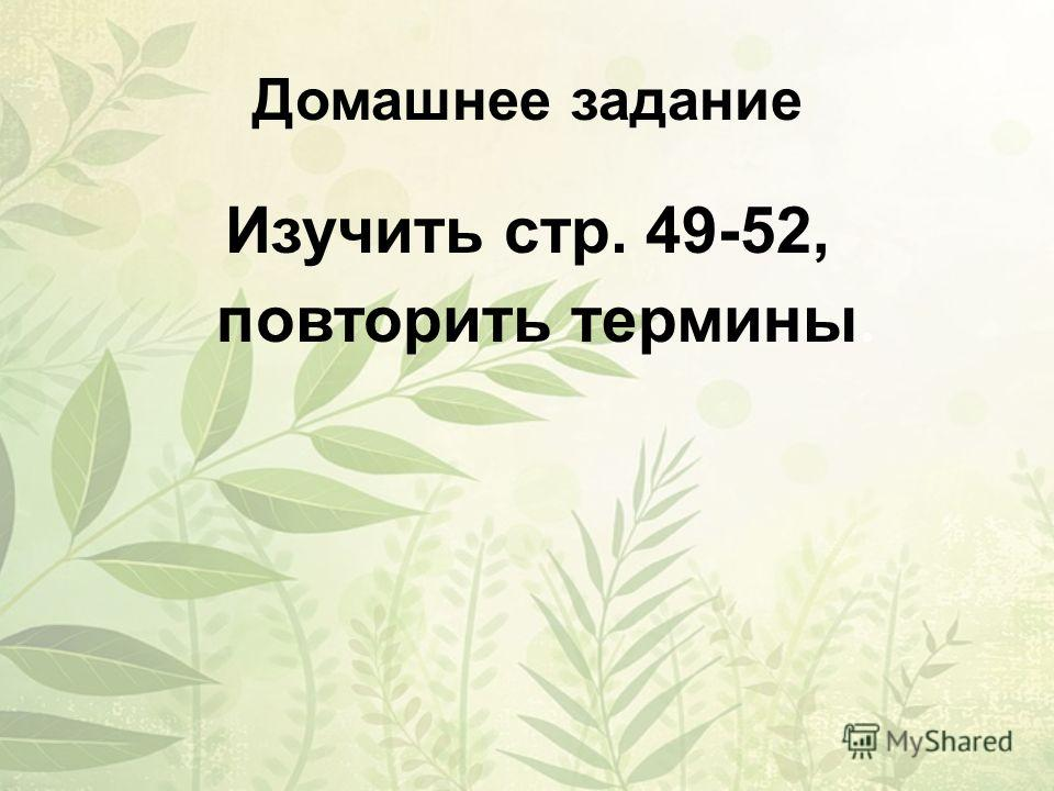 Домашнее задание Изучить стр. 49-52, повторить термины.
