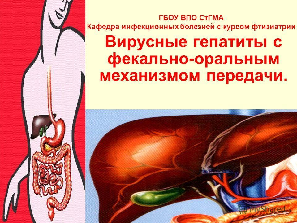 Вирусные гепатиты с фекально-оральным механизмом передачи. ГБОУ ВПО СтГМА Кафедра инфекционных болезней с курсом фтизиатрии