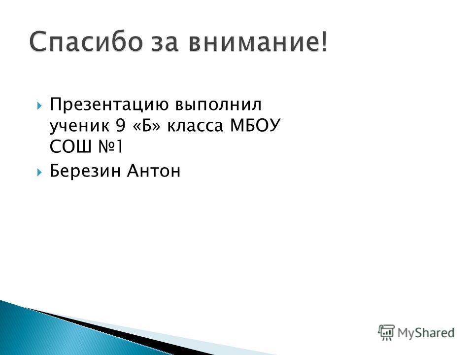 Презентацию выполнил ученик 9 «Б» класса МБОУ СОШ 1 Березин Антон