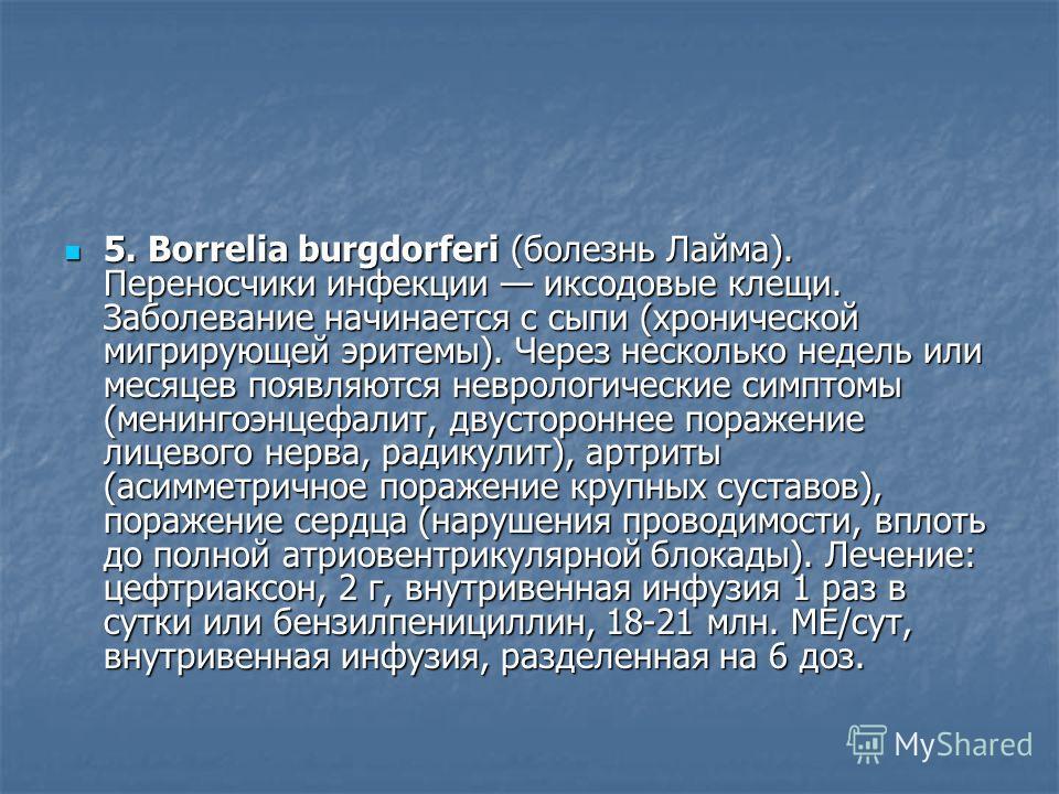 5. Borrelia burgdorferi (болезнь Лайма). Переносчики инфекции иксодовые клещи. Заболевание начинается с сыпи (хронической мигрирующей эритемы). Через несколько недель или месяцев появляются неврологические симптомы (менингоэнцефалит, двустороннее пор