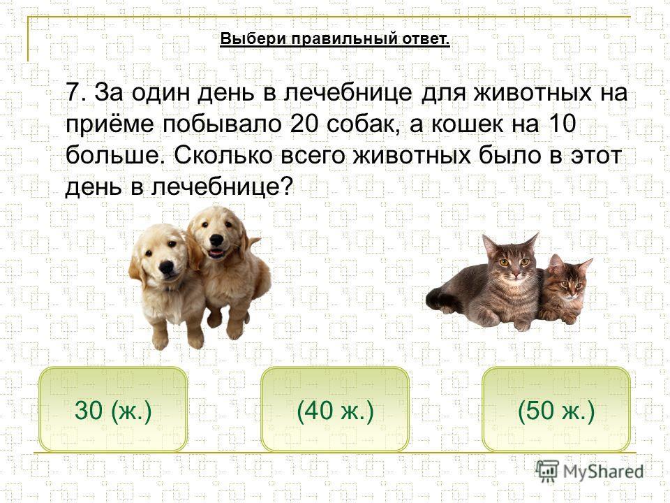 7. За один день в лечебнице для животных на приёме побывало 20 собак, а кошек на 10 больше. Сколько всего животных было в этот день в лечебнице? (50 ж.)30 (ж.)(40 ж.) Выбери правильный ответ.