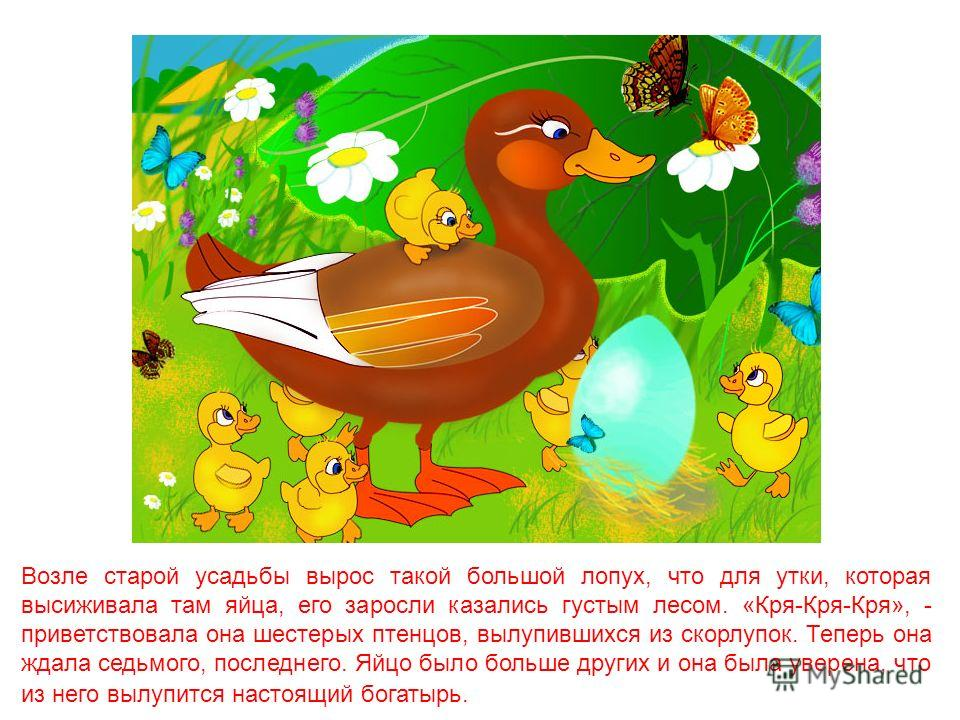 Гадкий утёнок Художник Сергий Елена