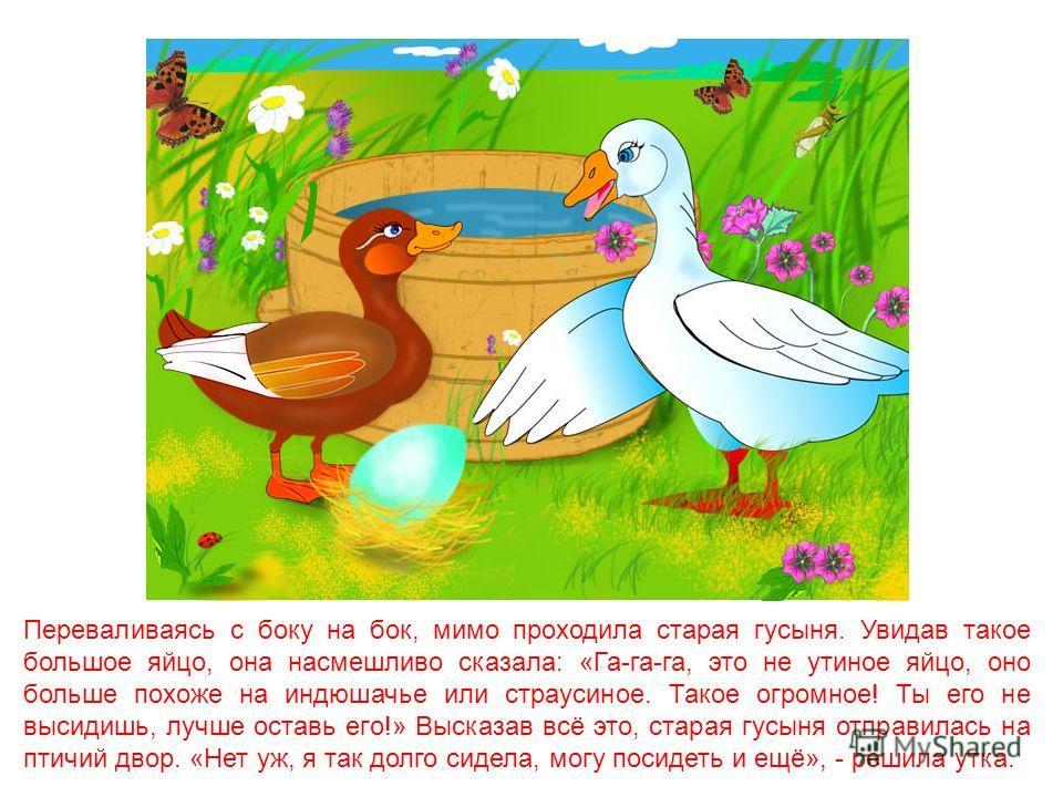 Возле старой усадьбы вырос такой большой лопух, что для утки, которая высиживала там яйца, его заросли казались густым лесом. «Кря-Кря-Кря», - приветствовала она шестерых птенцов, вылупившихся из скорлупок. Теперь она ждала седьмого, последнего. Яйцо