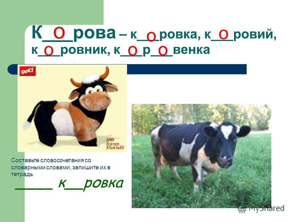 К___рова – к___ровка, к___ровий, к___ровник, к___р___венка о о о о оо ____ к__ровка Составьте словосочетания со словарными словами, запишите их в тетрадь