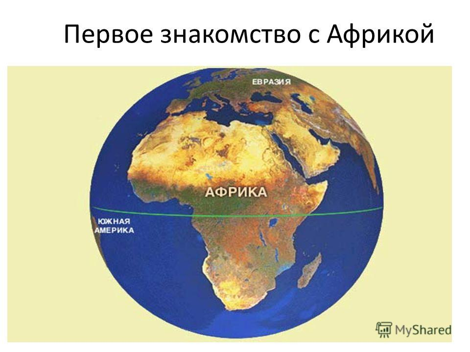Первое знакомство с Африкой