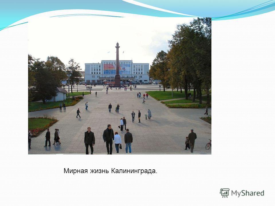 Мирная жизнь Калининграда.