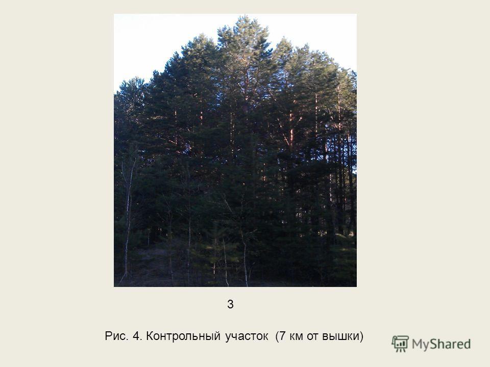Рис. 4. Контрольный участок (7 км от вышки) 3