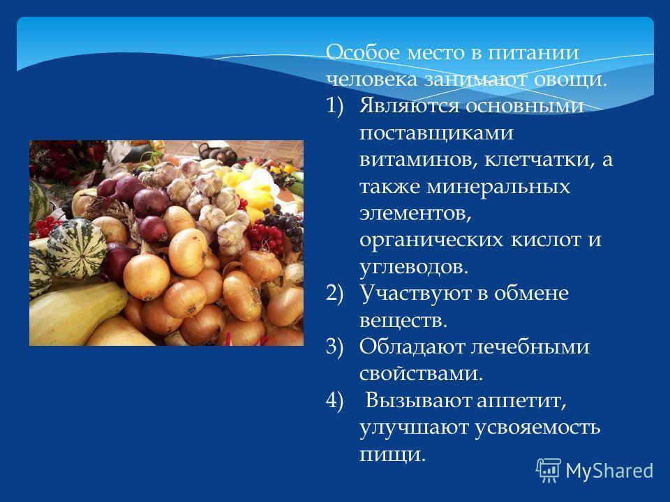 Особое место в питании человека занимают овощи. 1)Являются основными поставщиками витаминов, клетчатки, а также минеральных элементов, органических кислот и углеводов. 2)Участвуют в обмене веществ. 3)Обладают лечебными свойствами. 4) Вызывают аппетит