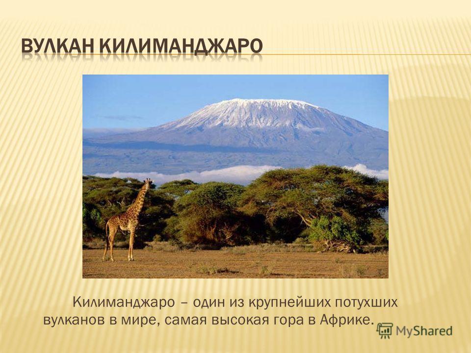 Килиманджаро – один из крупнейших потухших вулканов в мире, самая высокая гора в Африке.