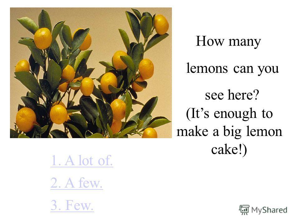 How many lemons can you see here? 1. A lot of. 2. A few. 3. Few. (Its enough to make a big lemon cake!)