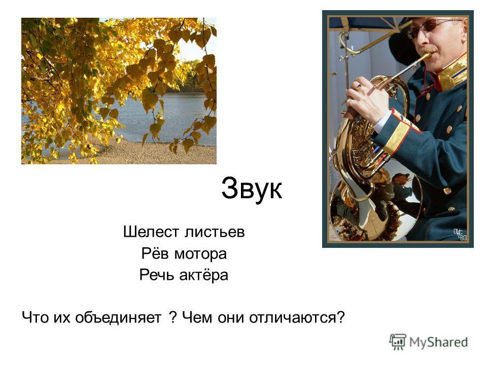 Звук Шелест листьев Рёв мотора Речь актёра Что их объединяет ? Чем они отличаются?