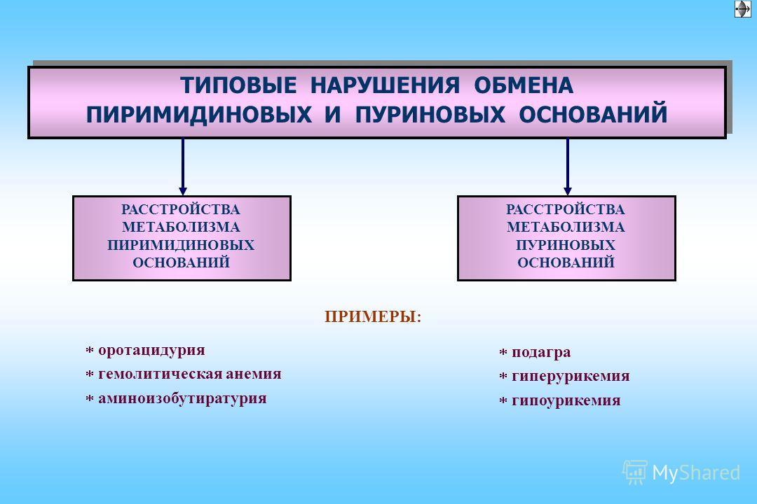 ВИДЫ НАРУШЕНИЙ МЕТАБОЛИЗМА АМИНОКИСЛОТ ПО ПРОИСХОЖДЕНИЮ ПО ПРЕИМУЩЕСТВЕННО НАРУШЕННОЙ РЕАКЦИИ МЕТАБОЛИЗМА АМИНОКИСЛОТ фенилкетонурия тирозинопатии алкаптонурии лейциноз гомоцистинурия другие Дисаминоацидемии при: сахарном диабете гипокортицизме недос