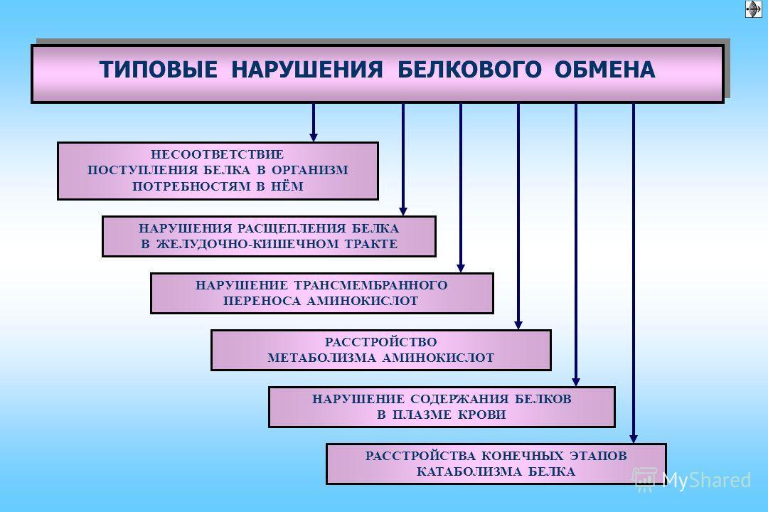 показатель величина Белки плазмы крови Белковые фракции (электрофорез на ацетат-целлюлозной пленке) 1 - глобулины 2.5 – 5% 2 - глобулины 5.1 – 9.2% - глобулины 8.1 – 12.2% - глобулины 12.8 – 19% Серомукоид 0.13 – 0.2 ед. Фибриноген (по Рутенбергу) 2