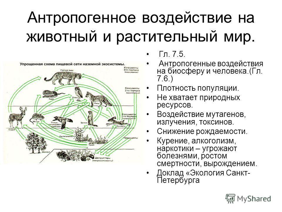 Антропогенное воздействие на животный и растительный мир. Гл. 7.5. Антропогенные воздействия на биосферу и человека.(Гл. 7.6.) Плотность популяции. Не хватает природных ресурсов. Воздействие мутагенов, излучения, токсинов. Снижение рождаемости. Курен