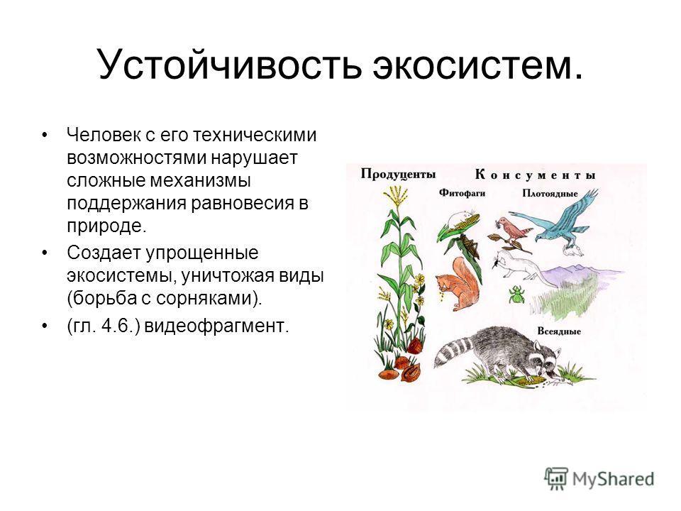 Устойчивость экосистем. Человек с его техническими возможностями нарушает сложные механизмы поддержания равновесия в природе. Создает упрощенные экосистемы, уничтожая виды (борьба с сорняками). (гл. 4.6.) видеофрагмент.