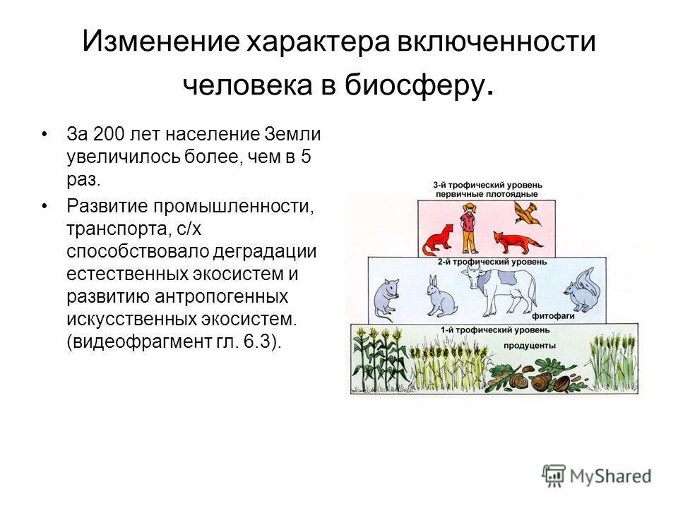 Изменение характера включенности человека в биосферу. За 200 лет население Земли увеличилось более, чем в 5 раз. Развитие промышленности, транспорта, с/х способствовало деградации естественных экосистем и развитию антропогенных искусственных экосисте