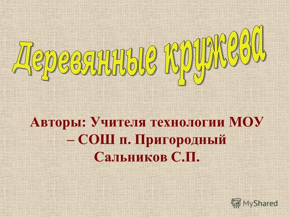 Авторы: Учителя технологии МОУ – СОШ п. Пригородный Сальников С.П.