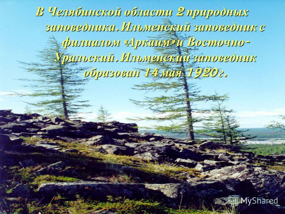 В Челябинской области 2 природных заповедника. Ильменский заповедник с филиалом «Аркаим» и Восточно- Уральский. Ильменский заповедник образован 14 мая 1920 г.