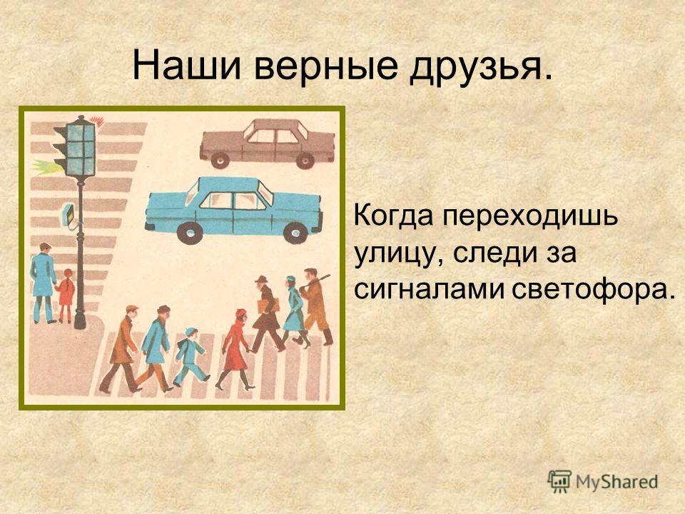 Наши верные друзья. Когда переходишь улицу, следи за сигналами светофора.