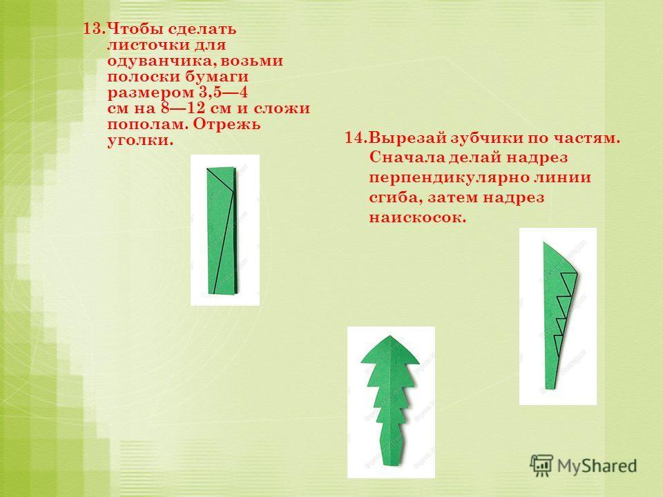 13.Чтобы сделать листочки для одуванчика, возьми полоски бумаги размером 3,54 см на 812 см и сложи пополам. Отрежь уголки. 14.Вырезай зубчики по частям. Сначала делай надрез перпендикулярно линии сгиба, затем надрез наискосок.