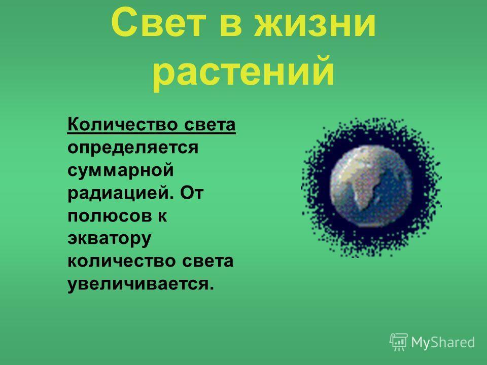 Свет в жизни растений Количество света определяется суммарной радиацией. От полюсов к экватору количество света увеличивается.