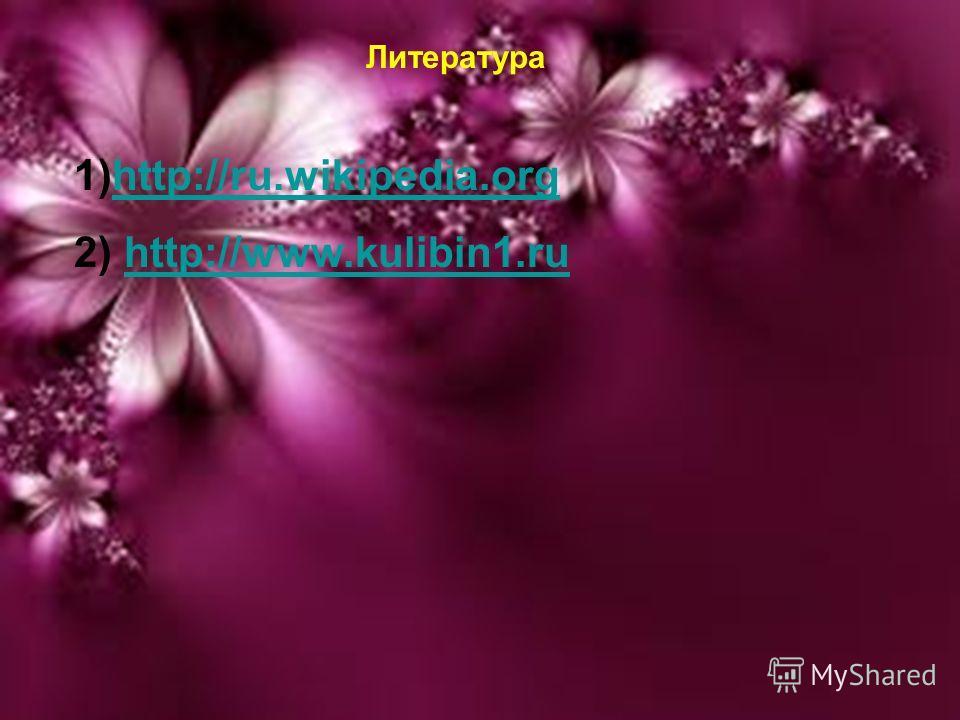 20.02.20149 Литература 1)http://ru.wikipedia.orghttp://ru.wikipedia.org 2) http://www.kulibin1.ruhttp://www.kulibin1.ru