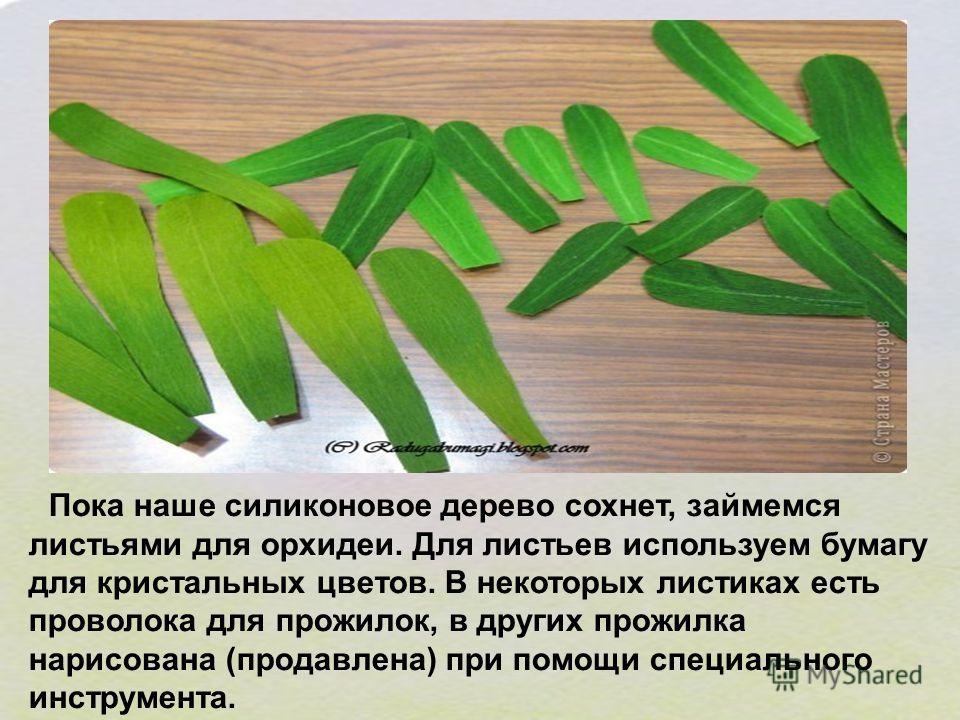 Пока наше силиконовое дерево сохнет, займемся листьями для орхидеи. Для листьев используем бумагу для кристальных цветов. В некоторых листиках есть проволока для прожилок, в других прожилка нарисована (продавлена) при помощи специального инструмента.