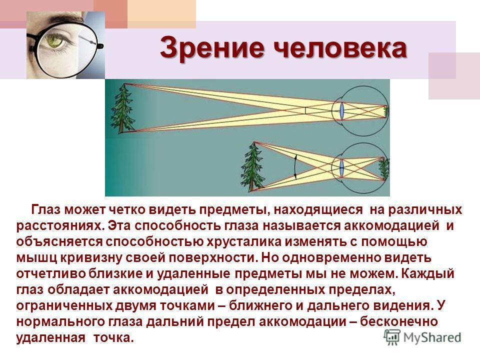 Зрение человека Глаз может четко видеть предметы, находящиеся на различных расстояниях. Эта способность глаза называется аккомодацией и объясняется способностью хрусталика изменять с помощью мышц кривизну своей поверхности. Но одновременно видеть отч
