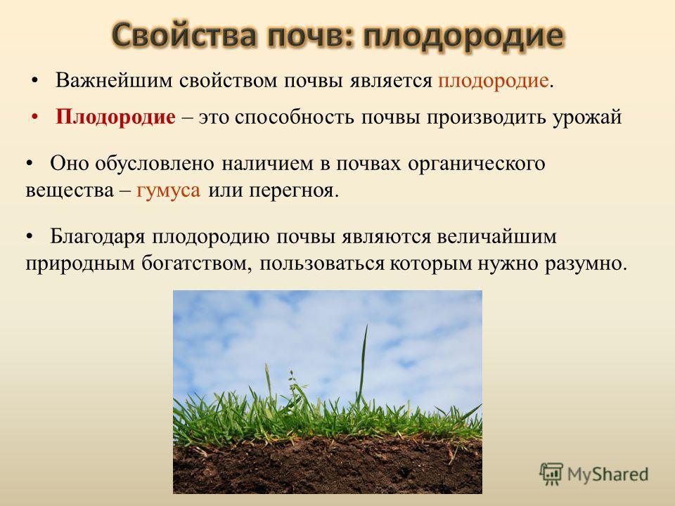 Оно обусловлено наличием в почвах органического вещества – гумуса или перегноя. Благодаря плодородию почвы являются величайшим природным богатством, пользоваться которым нужно разумно. Важнейшим свойством почвы является плодородие. Плодородие – это с