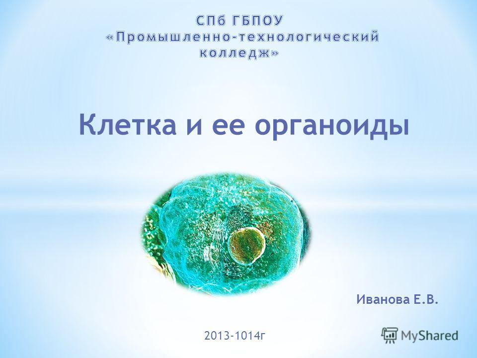 Клетка и ее органоиды Иванова Е.В. 2013-1014г