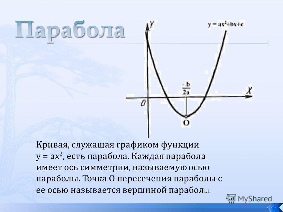 Кривая, служащая графиком функции у = ах 2, есть парабола. Каждая парабола имеет ось симметрии, называемую осью параболы. Точка О пересечения параболы с ее осью называется вершиной парабол ы.