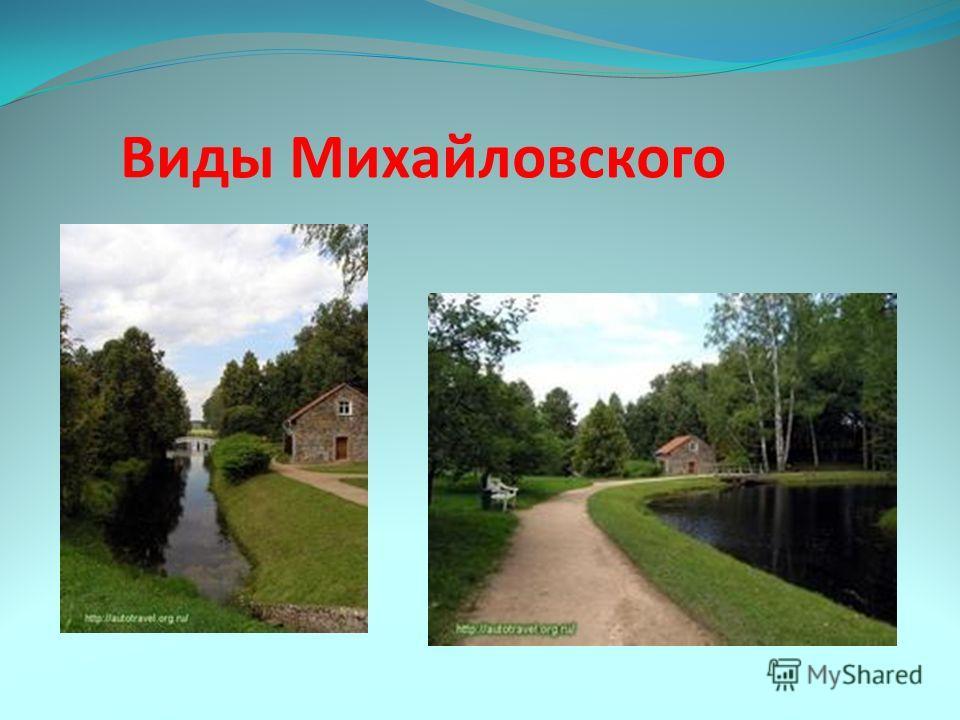 Виды Михайловского
