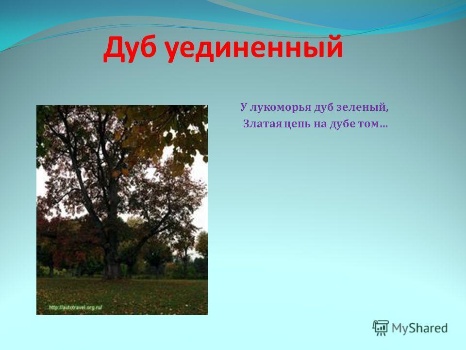 Дуб уединенный У лукоморья дуб зеленый, Златая цепь на дубе том…